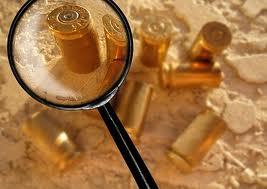 Crime Scene Investigation/Forensic Science