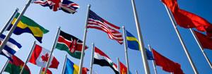 Intercultural / Multicultural and Diversity studies